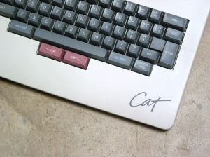 Canon Cat Leap Keys